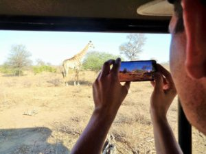 SOUTH AFRICA: Safari in Limpopo – Balule Nature Reserve