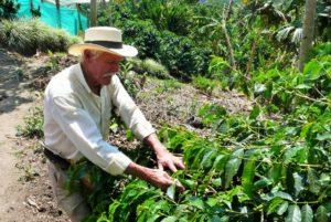 COLOMBIA: Pereira – Zona Cafetera